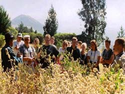 student group medicinal plants shamanism